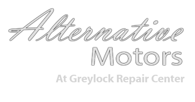 Alternative Motors logo
